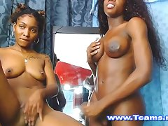 Hot Ebony Shemale and Babe Big Asses